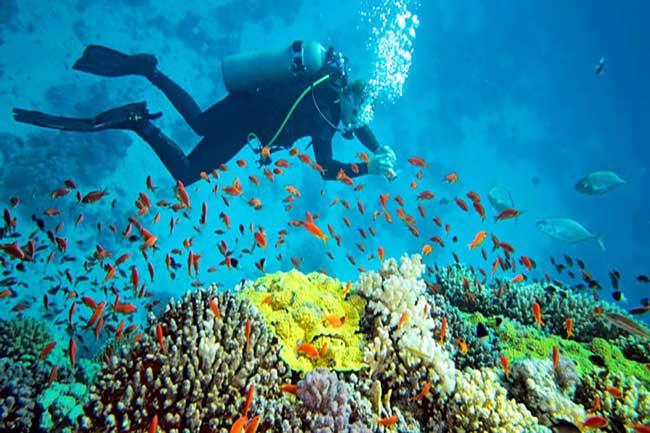 راهنمای سفر به جزیره کولایت