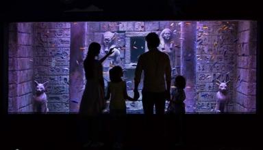 akvariom 4 384x220 - معرفی آکواریم استانبول | دیدنی های استانبول