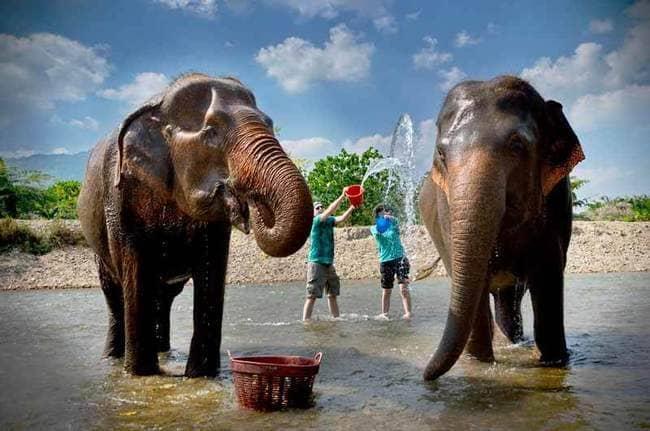 معرفی مکان های دیدنی چیانگ مای - بخش دوم