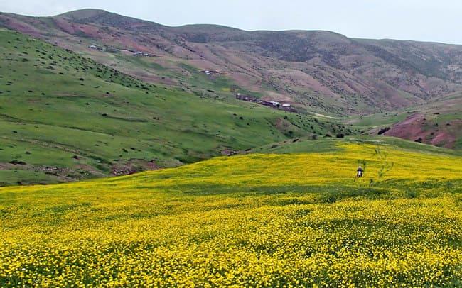 جاهای دیدنی شمال ایران