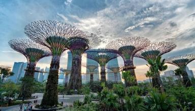 26565089430 3e2d850ee8 o 1024x576 384x220 - بهترین کارهایی که باید در سنگاپور انجام دهید | Singapore