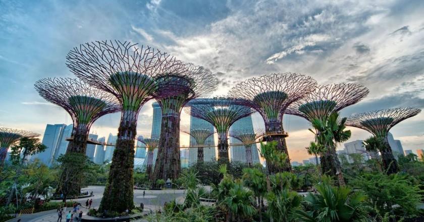 26565089430 3e2d850ee8 o 1024x576 - بهترین کارهایی که باید در سنگاپور انجام دهید | Singapore