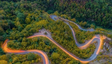 جاده جنگلی توسکستان