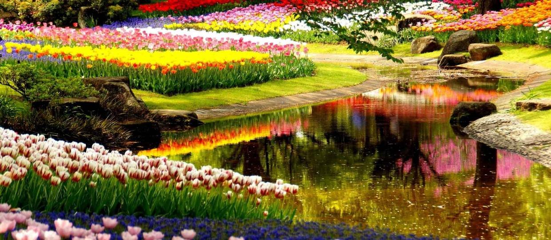 آشنایی با باغ گل کوکنهوف