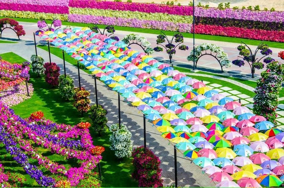 باغ گل میراکل دبی