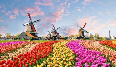 زمان مناسب برای سقر به هلند