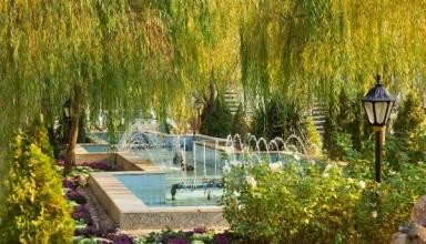 melli park 3 384x220 - آشنایی با باغ ملی شهر مشهد