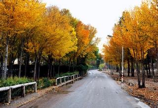 پارک ناژوان اصفهان