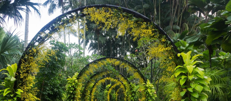 24618687070 49d0d82b4b k 1240x540 - سنگاپور ، سبزترین شهر آسیا   Singapore