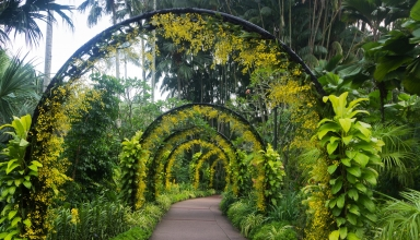 24618687070 49d0d82b4b k 384x220 - سنگاپور ، سبزترین شهر آسیا | Singapore