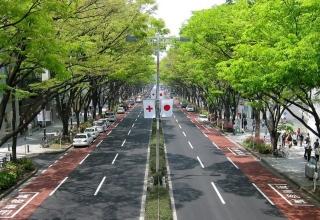 omotesando may 2010 02 e1508286261310 320x220 - توکیو به عنوان امن ترین شهر جهان شناخته می شود | Tokyo