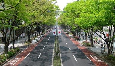 omotesando may 2010 02 e1508286261310 384x220 - توکیو به عنوان امن ترین شهر جهان شناخته می شود | Tokyo