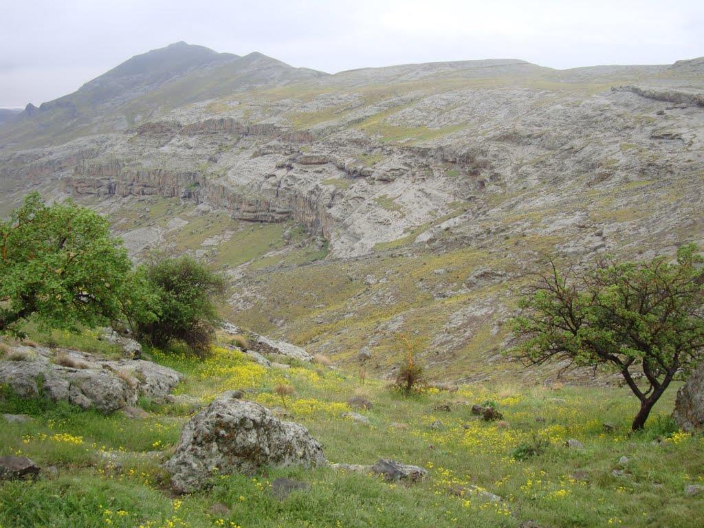 جزیره اسلامی تبریز