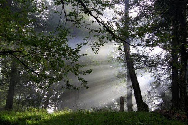 آبشار سیاسرت رامسر