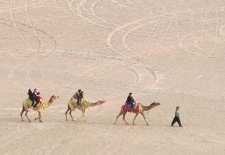 کویر سندباد یزد