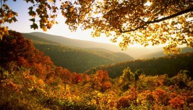 بهترین پارک های ملی