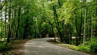 پارک جنگلی وردآورد تهران