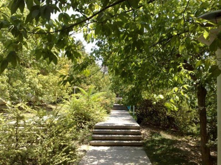 پارک جنگی افرا تهران