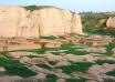 شهر شاهی شوش