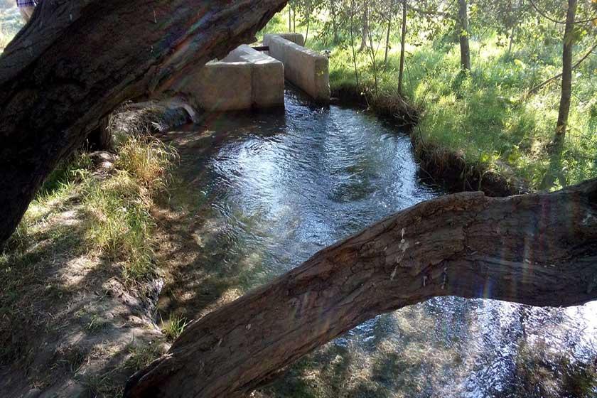چشمه گیلاس چناران