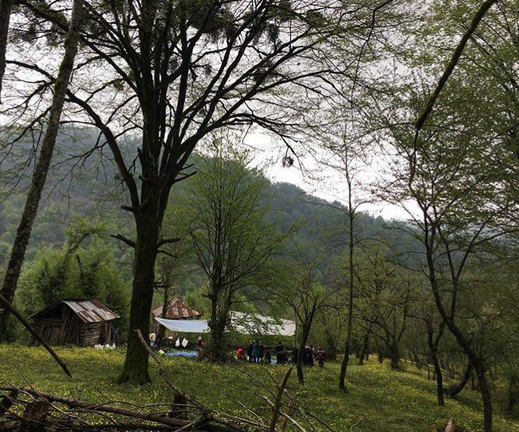 آبشار آهکی و جنگل لفور سوادکوه