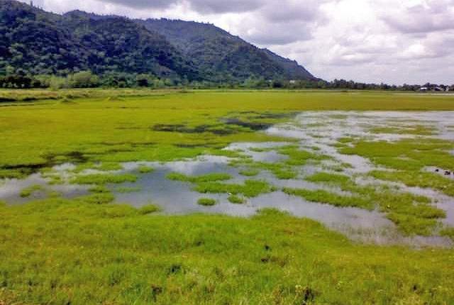 دریاچه کومله گیلان