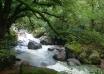 آبشار لوشکی تالش