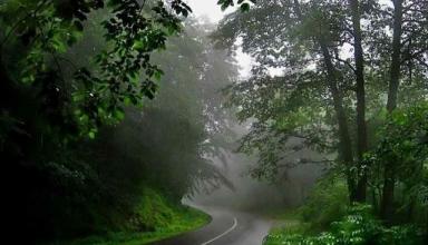 جاده کلاردشت عباس آباد شمال