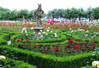 باغ گل رز برن سوئیس