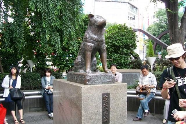چهارراه شیبویا توکیو ژاپن