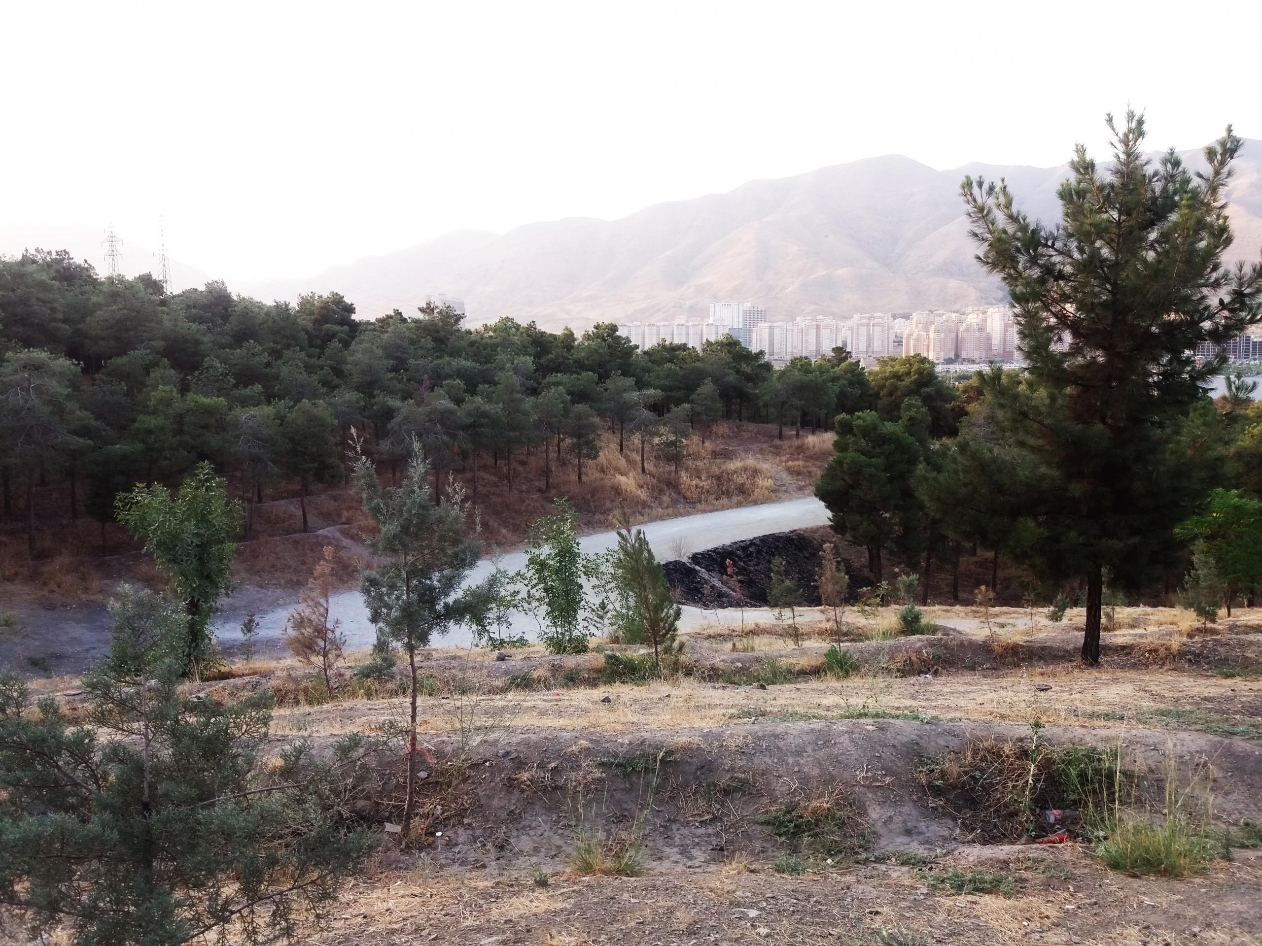 دریاچه چیتگر و پارک جنگلی