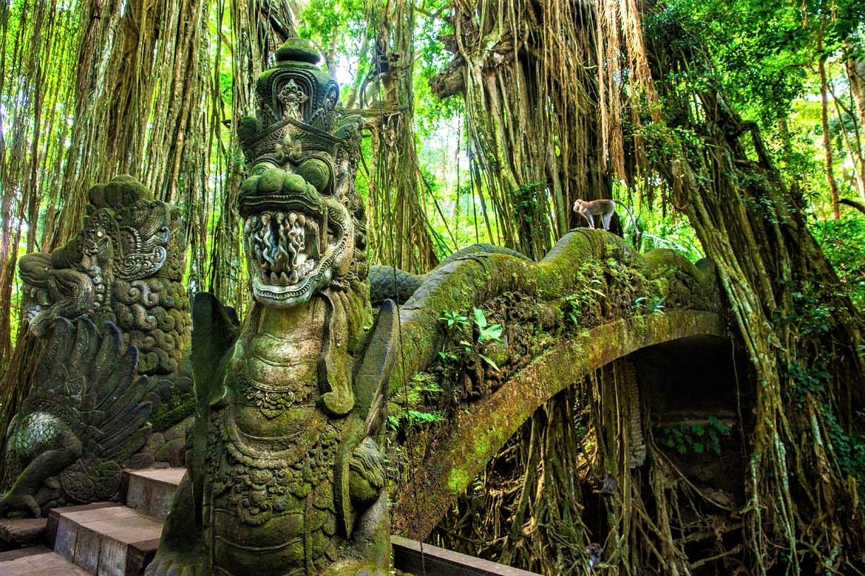 جاهای دیدنی ابود بالی