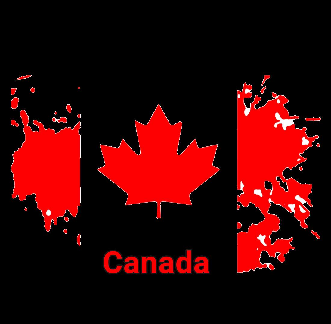 دریافت تضمینی ویزای استارتاپ کانادا با موسسه رویال اپلای
